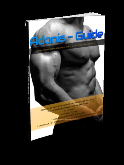 Adonis-Guide