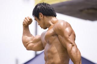 Muskelaufbau – Der schnelle Weg zum Erfolg [v. muskel-guide]